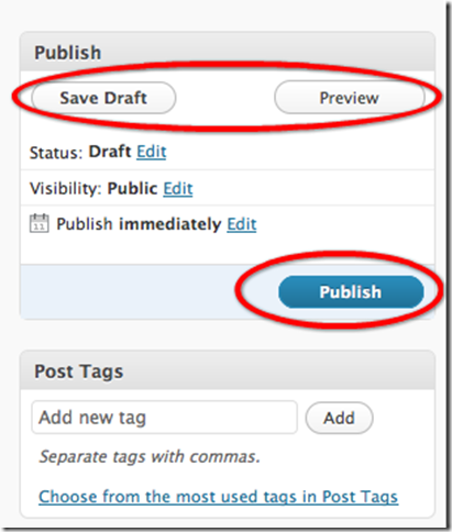 wordpresspublishpost1 Writing a Blog Aritcle Using the WordPress Web Interface